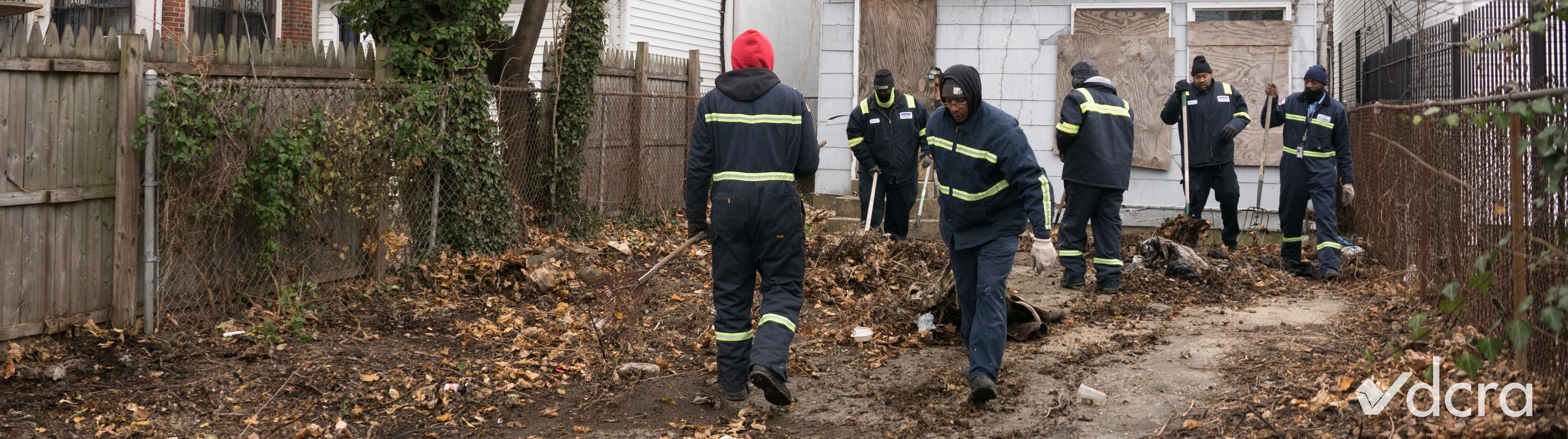 DCRA employees doing an inspection in a yard