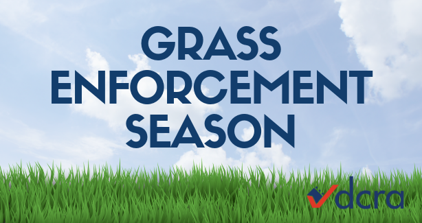 Grass Enforcement Season